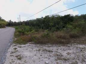 BANKS ROAD,Palmetto Point