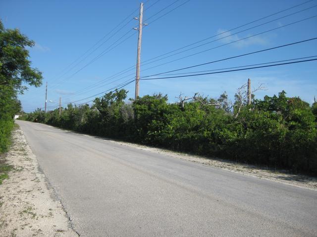 LONG ISLAND MCKANN'S,McKanns