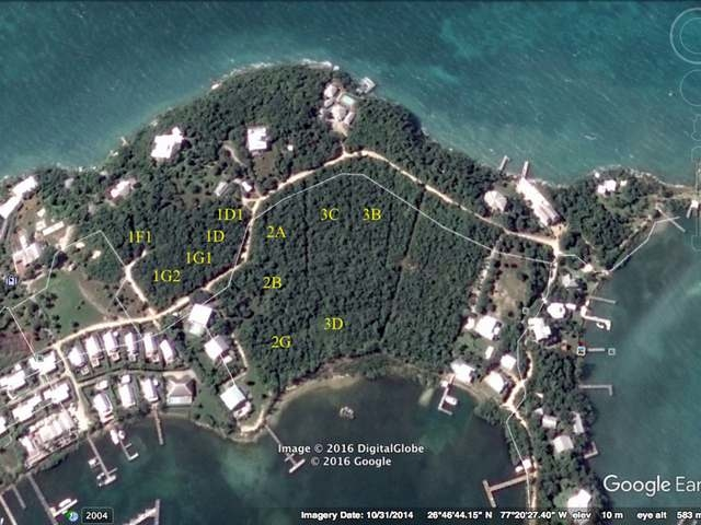 ISLAND REACH/1D,Green Turtle Cay