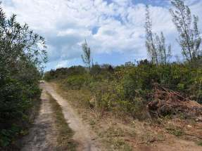 LOT 63,Green Turtle Cay