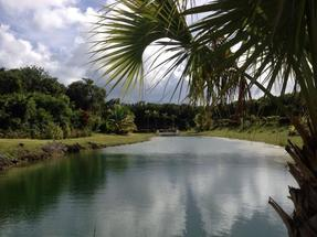 LYFORD HILLS,Lyford Cay