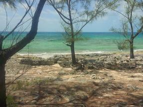 RAINBOW BAY,Rainbow Bay