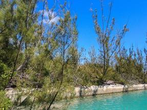 4 PINTA AVENUE,Bahamia