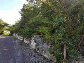 SAN SOUCI,Eastern Road