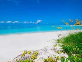 BEACHFRONT TREASURE CAY RESORT - ENTIRE OFFERING,Treasure Cay
