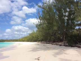 COCONUT BAY PLANTATION,Other Cat Island