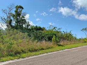LYFORD HILLS LOT,Other New Providence/Nassau