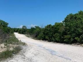 BAHAMA SOUND BOULEVARD,Bahama Sound