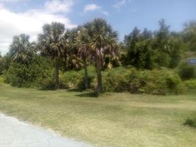 BAHAMIA LOT,Bahamia