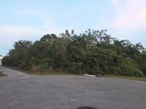 JACARANDA CIRCLE,Jacaranda