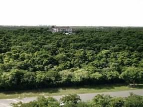 LYFORD CAY,Lyford Cay