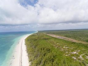 GRAND BAHAMA 390 ACRES,High Rock