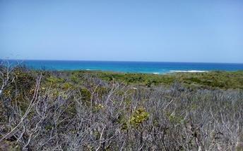 SCRUB HILL,Deadmans Cay