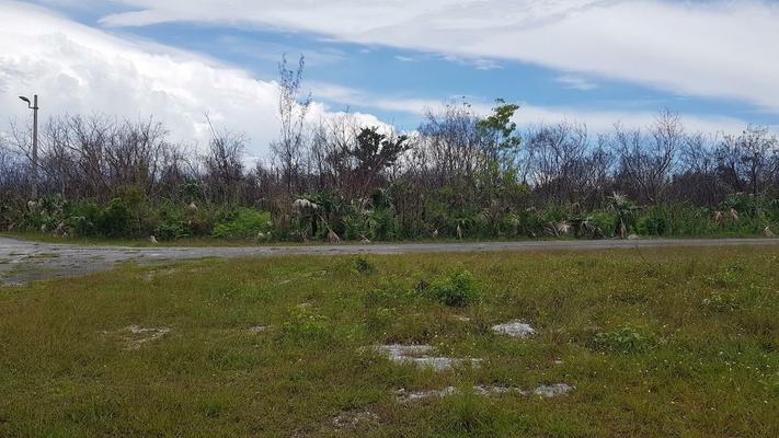 DUCHESS WAY,Bahamia