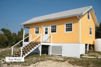 Yellow Wood Abaco, Bahamas