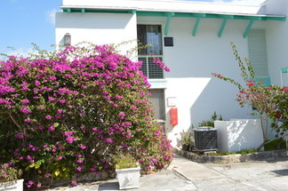 West Bay Street Nassau, Bahamas