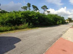 417 & 419 Grenada Ave. Lucaya, Grand Bahama